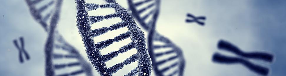 Genetikia pgs test