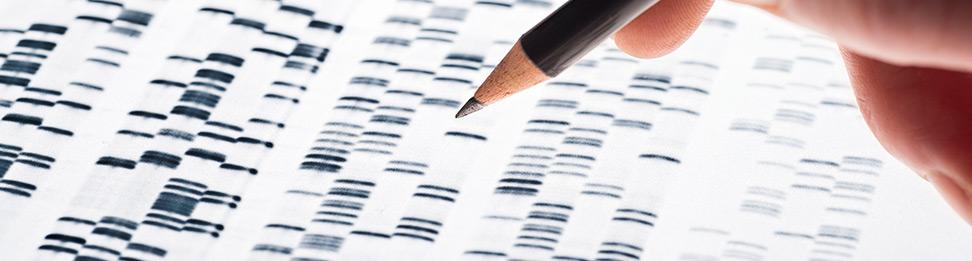 Genetika pgd test